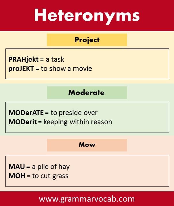 Heteronyms Examples