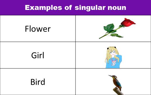 examples of singular plural